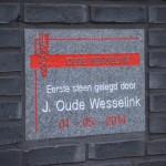 Oude Wesselink Bronbemaling Eerste Steen